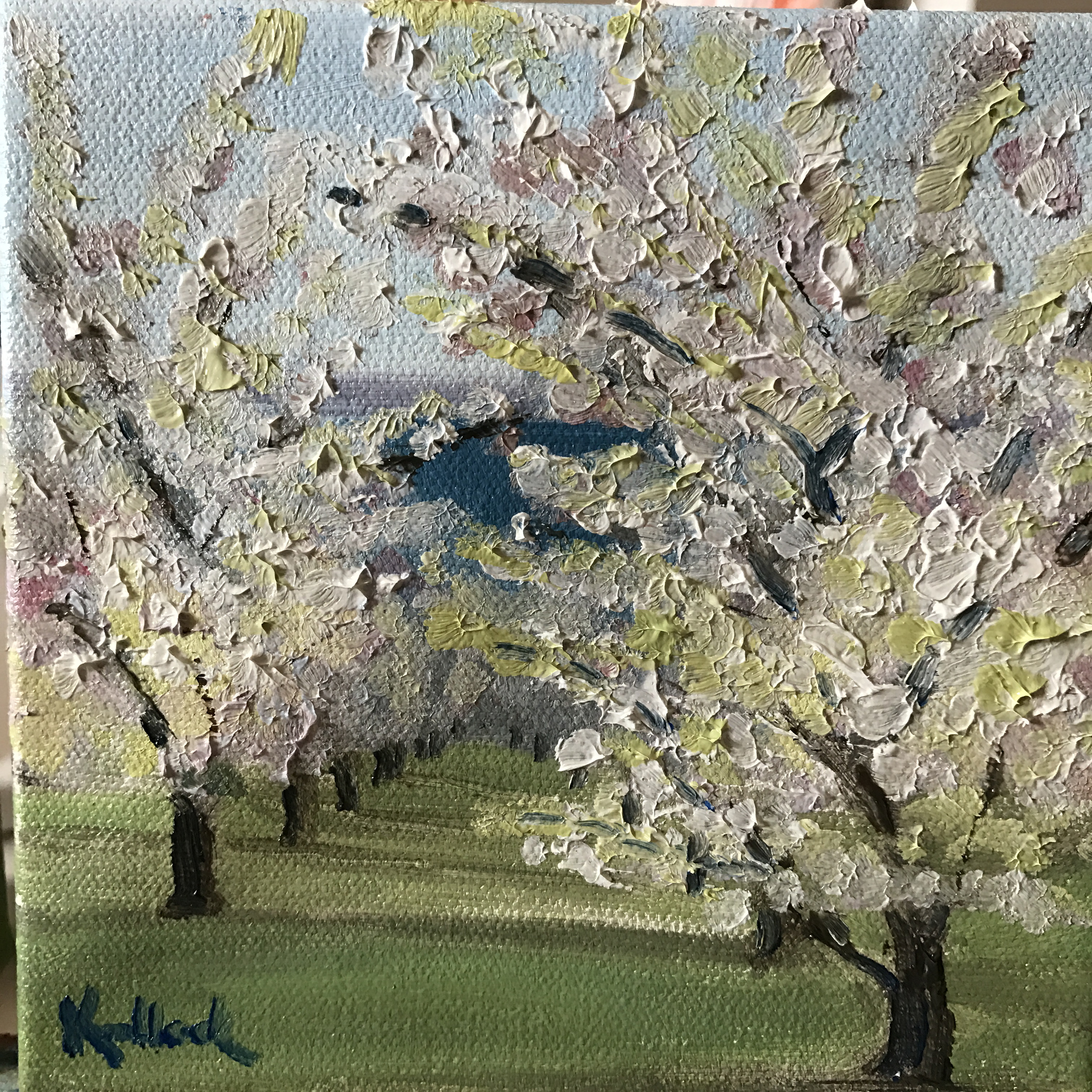 blossom day traverse city original oil painting by gretchen knoblock #wompblossomday